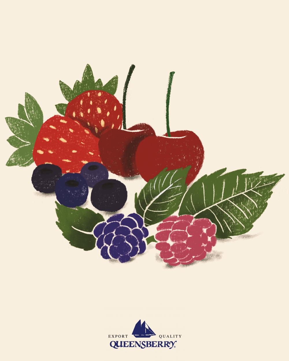 11-Ilustração-Frutas-silvestres-Feed